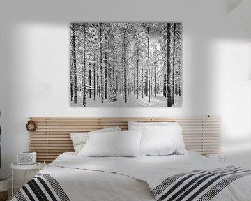 Durch die Bäume der Wald, schwarz und weiß, Finnland von Rietje Bulthuis