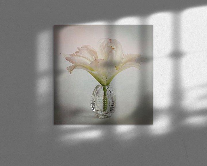 Sfeerimpressie: Hibiscus in pastel van Elly van Veen