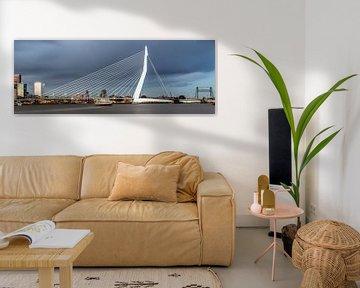 Panorama foto van de skyline van Rotterdam van Miranda van Hulst