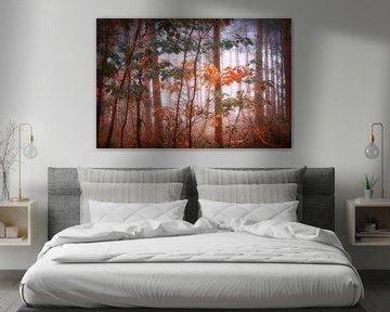 Dream forest .  Muur behang. van Saskia Dingemans