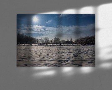 Schöne Schneelandschaft mit verschneiten Bäumen unter einem strahlend blauen Himmel von Kim Willems