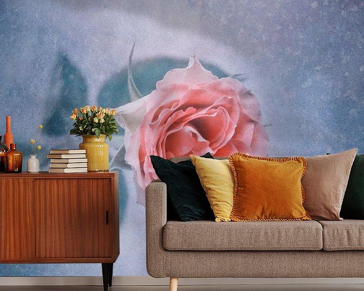 Beispiel fototapete: Winterrose von Claudia Moeckel