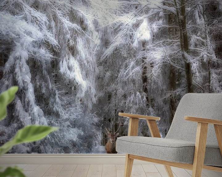 Beispiel fototapete: Wintermärchen von Claudia Moeckel