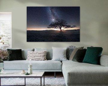 Melkweg in de Harz Savannah van Oliver Henze