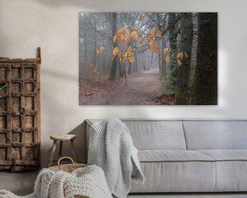 Herfstblaadjes in mistig bos van Atelier van Saskia