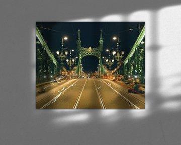 Freiheitsbrücke in Budapest von Keserű Collective