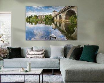 Weißer Schwan an der alten Brücke in Limburg an der Lahn von Marc Venema