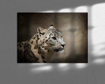 Porträt Leopard von Diana van Tankeren