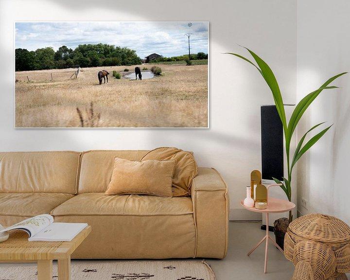 Beispiel: Natur Frankreich von Anuska Klaverdijk
