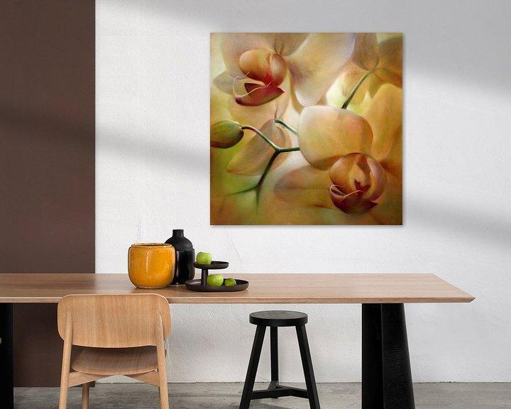 Beispiel: Orchideen von Annette Schmucker