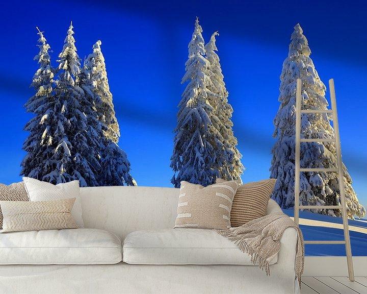 Beispiel fototapete: Schneebäume Feldberg Schwarzwald von Patrick Lohmüller