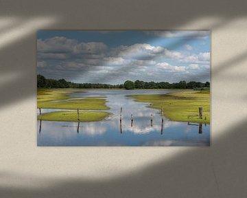 Beleven met wolkenlucht van Elles Rijsdijk