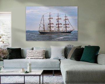Eerbetoon aan de Kroonprins tijdens Sail Den Helder