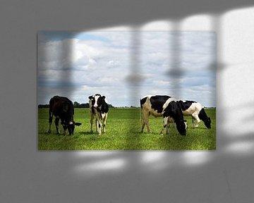Weidende Kühe in einer urholländischen Landschaft von Robin Verhoef