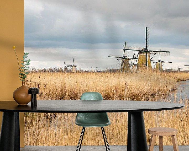 Beispiel fototapete: Windmühlen, holländische Landschaft, Natur von Mirjam Verbeek
