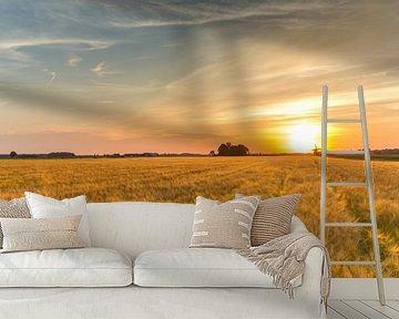 Graanveld bij zonsondergang van Marcel Kerdijk