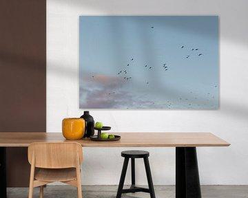 Weg vliegende vogels. Meeuwen. Natuur. Pastelkleuren. Fine art fotografie. van Quinten van Ooijen