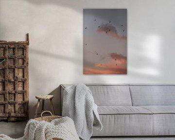 Vliegende vogels. Meeuwen. Roze zonsondergang. Fine art fotografie. van Quinten van Ooijen