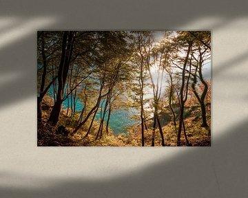 Herbst an der Kreideküste von Martin Wasilewski