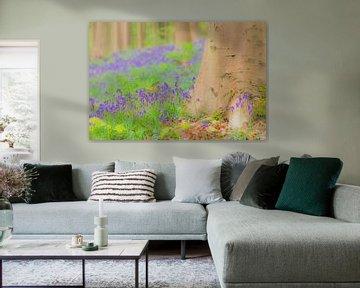 Wilde hyacinten bloemen op de bosbodem in het Hallerbos van Sjoerd van der Wal