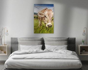 Grazende Zwitserse koe tussen grassprieten van Besa Art