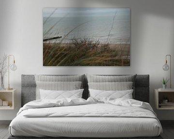 Strandhafer auf der Düne von Maarten de Jong