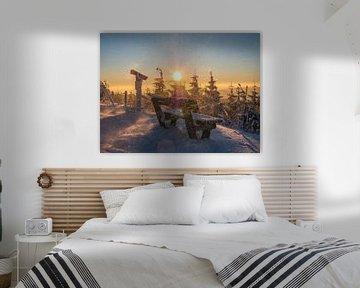 winterse sneeuwstorm op de Fichtelberg van Animaflora PicsStock
