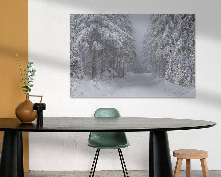 Sfeerimpressie: romantisch winterbos in het Erzgebirge in Saksen van Animaflora PicsStock