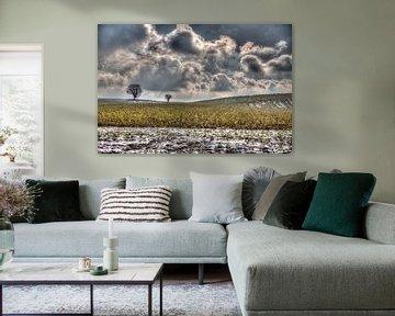 apocalypse, kollenberg van Frank Janssen