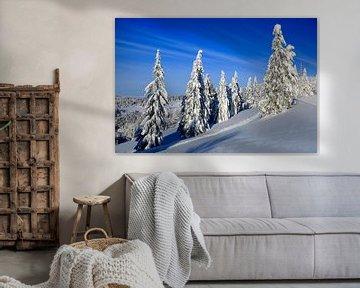 Feldberg mit Schnee