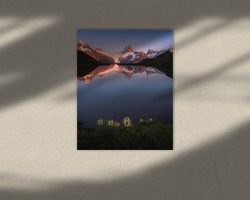 Bachalpsee, Grindelwald van Markus Stauffer