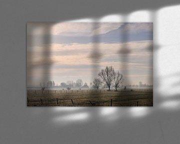 heerlijke winterochtend van Tania Perneel