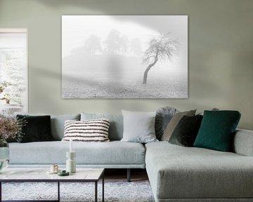 Baum in nebliger Landschaft von Marcel Kerdijk