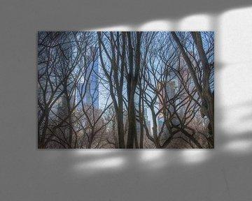 Central Park New York City van Marcel Kerdijk