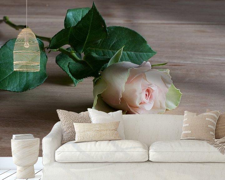 Sfeerimpressie behang: een roze roos van Compuinfoto .