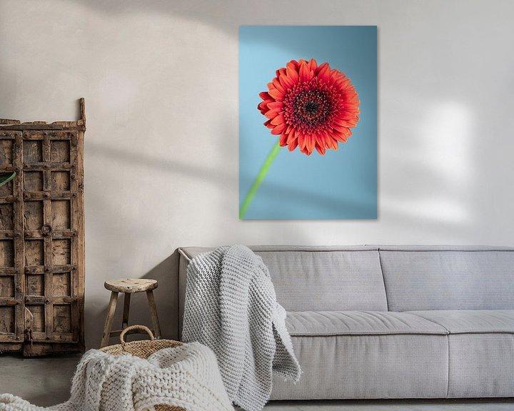 Sfeerimpressie: Gerbera bloem van Van Keppel Studios
