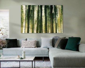 Bewegende boomstammen in het bos van Fotografiecor .nl