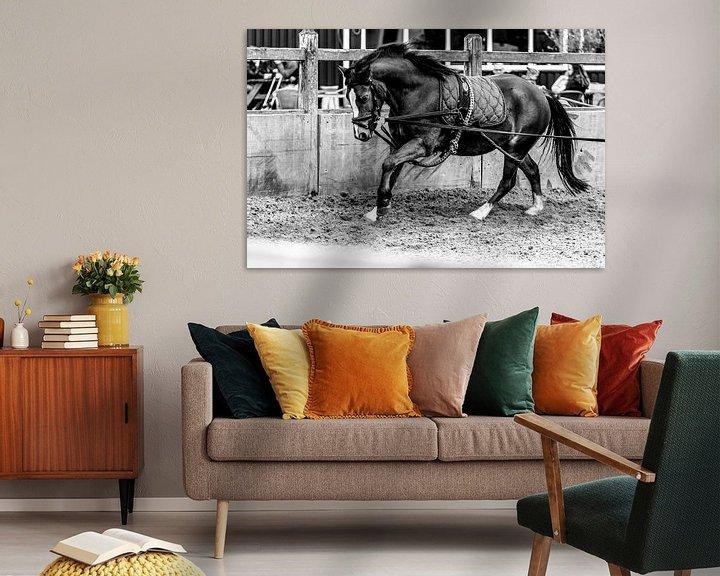Sfeerimpressie: Longeren van een pony van Marcel Runhart