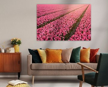 Eindeloos tulpen veld van Dirk-Jan Steehouwer