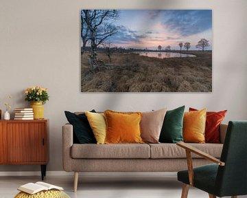 Paarse lucht tijdens zonsondergang van Marcel Kerdijk