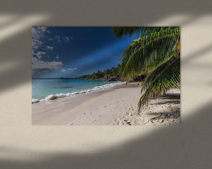 Beispiel: Sandstrand auf der Seychelleninsel Praslin von Reiner Conrad