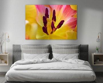 Herz einer Tulpe von Ad Jekel