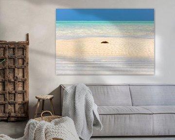 Paradijs achtig rustgevend stukje strand op Zanzibar van Michiel Ton