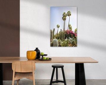 Cactussen, bloemen en palmbomen in Marrakesh