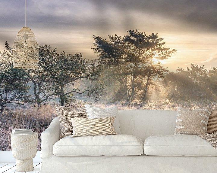 Sfeerimpressie behang: Frosty morning Beegderheide van Peschen Photography