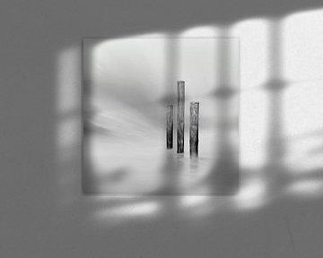 Palendorp Petten - 1 von Martin van Lochem