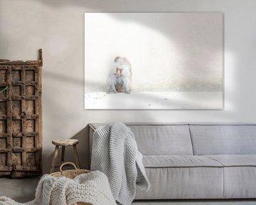 Mantelpavian von Esther Bakker-van Aalderen