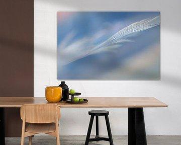 Veer Abstract II