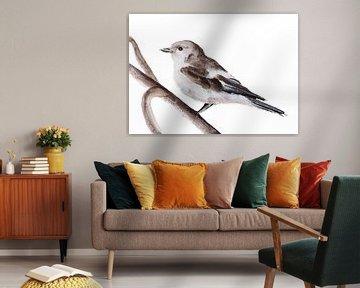 Diese Pied Flycatcher Vogel Illustration von Angela Peters