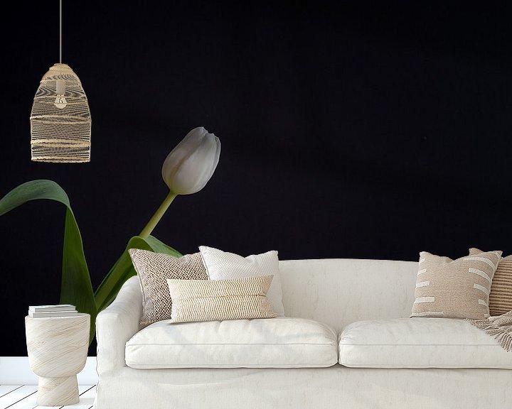 Beispiel fototapete: Stilleben mit einer weißen Tulpe von John van de Gazelle